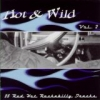 VA / Hot & Wild Vol. 2 (CD)